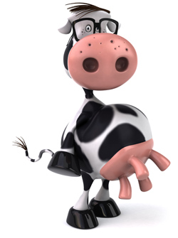 Cartoon cow showing his udders