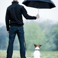 Man standing holding an umbrella over his dog in the rain